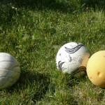 Zum-Weinberg_Freizeit_Sport-4